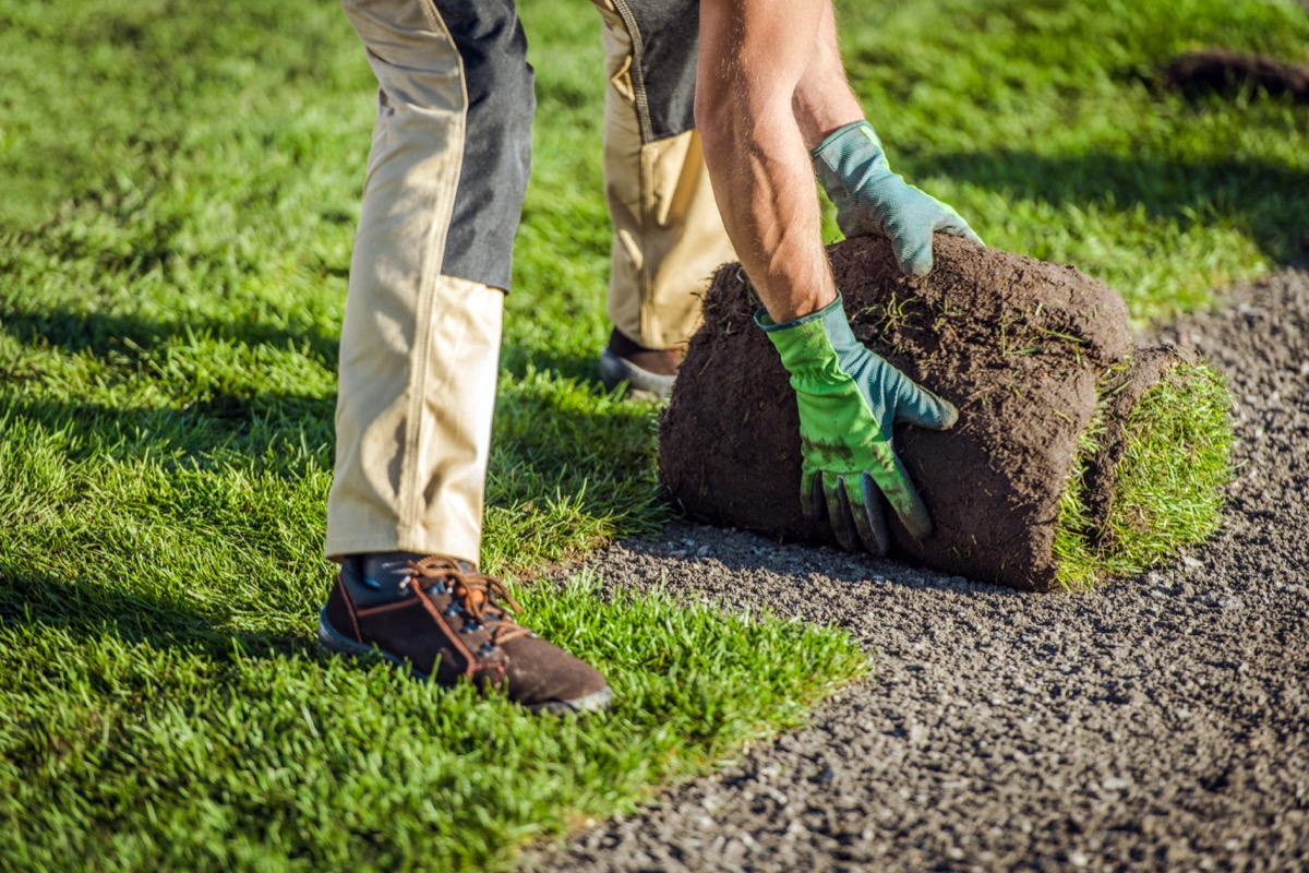 natural-grass-turfs-installation-by-garden-worker-8PKLUFH